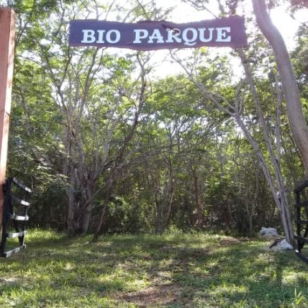Bioparque Pak'al K'aax 20min.