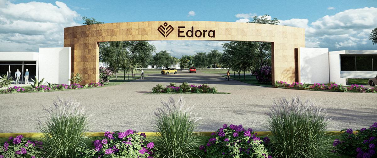 Frontal EDORA 4K